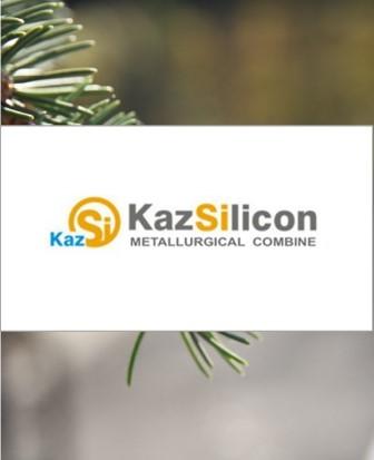 http://www.kazsilicon.kz/
